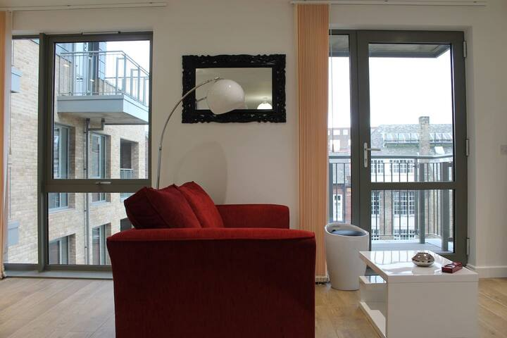Fabulous apartment near Big Ben