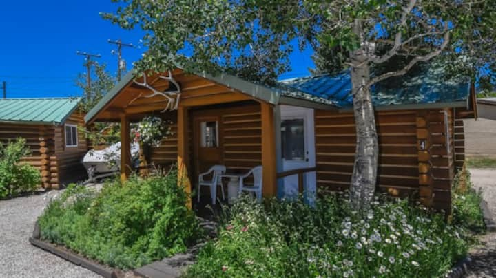Historic Trapper Cabin - THE PERFECT SAFE SHELTER-IN-PLACE