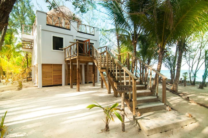 Premier Oceanfront Cabana at Thatch Caye