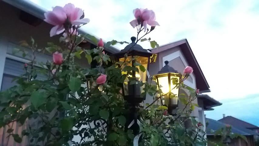 Mogyoród Little White house
