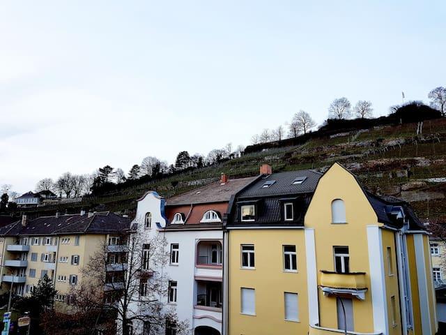 Ausblick auf den Schlossberg