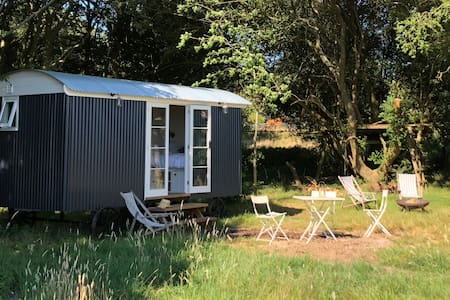 Shepherd's Hut in the New Forest