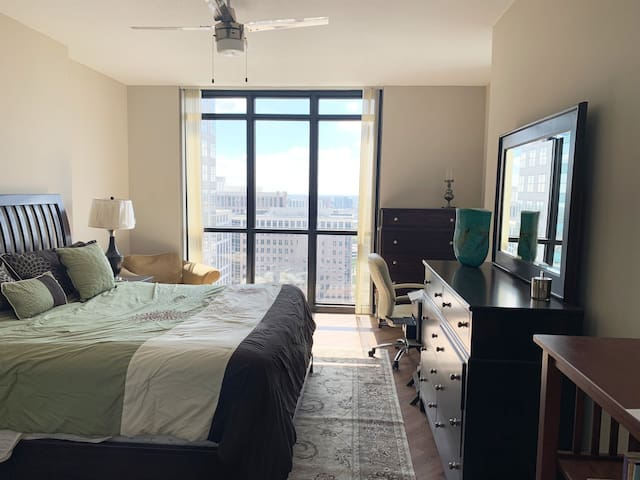 Beautiful Downtown Apt with Amazing Views
