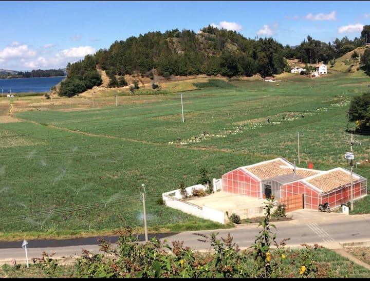 "Casa campestre junto al lago de Tota ""ENTREVERDE"""
