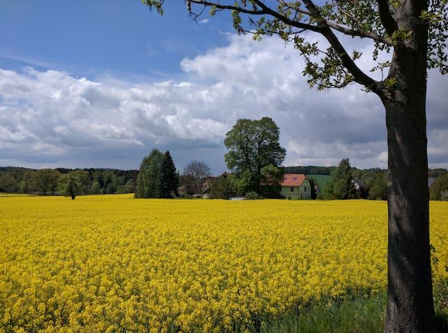Lindenhof - mit Stil in der Natur - Schmölln-Putzkau