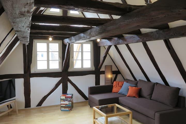 Wohnen in historischer Remise am Landgrafenschloss