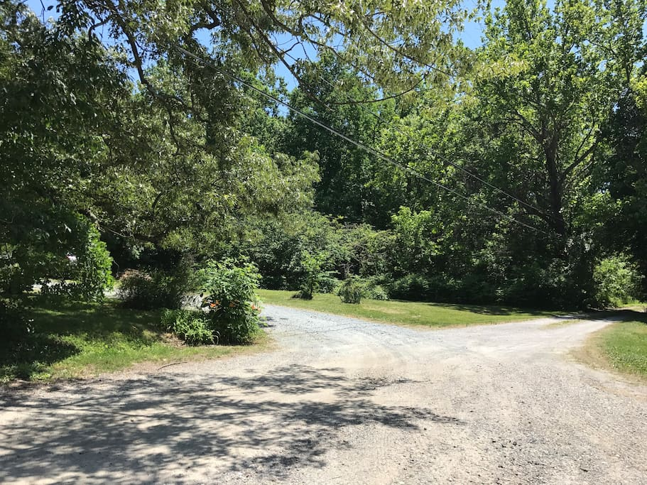 The driveway from the road. We are on the left.