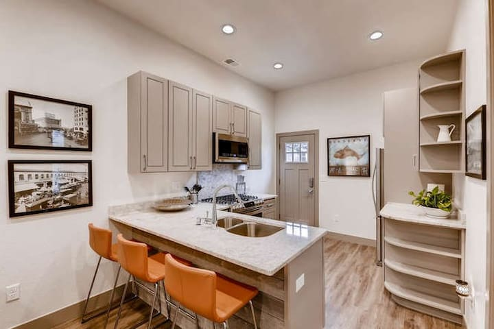 Beautiful 2bd/1bth walkable to RINO! (30-Day Min)
