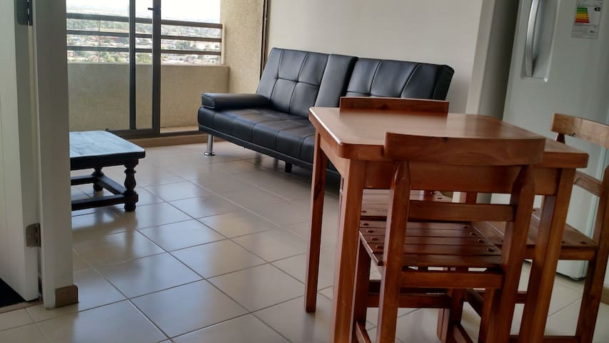 Cozy 1B/1B Apt,close to subway& great connectivity - Santiago