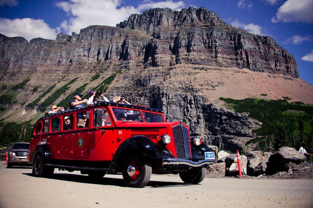 Glacier National Park Tour bus