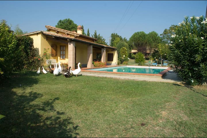 Pagliazzone, sleeps 4 guests in Perelli - Bucine