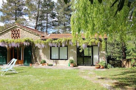 Family, pet-friendly villa+pool close to Florence - Londa - Villa