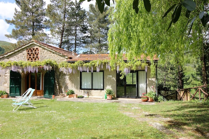 Family, pet-friendly villa+pool close to Florence