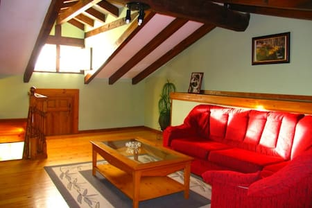 ALOJAMIENTO RURAL PARA DOS MATRIMONIOS Y 2 NIÑOS - Cabuérniga - Apartment