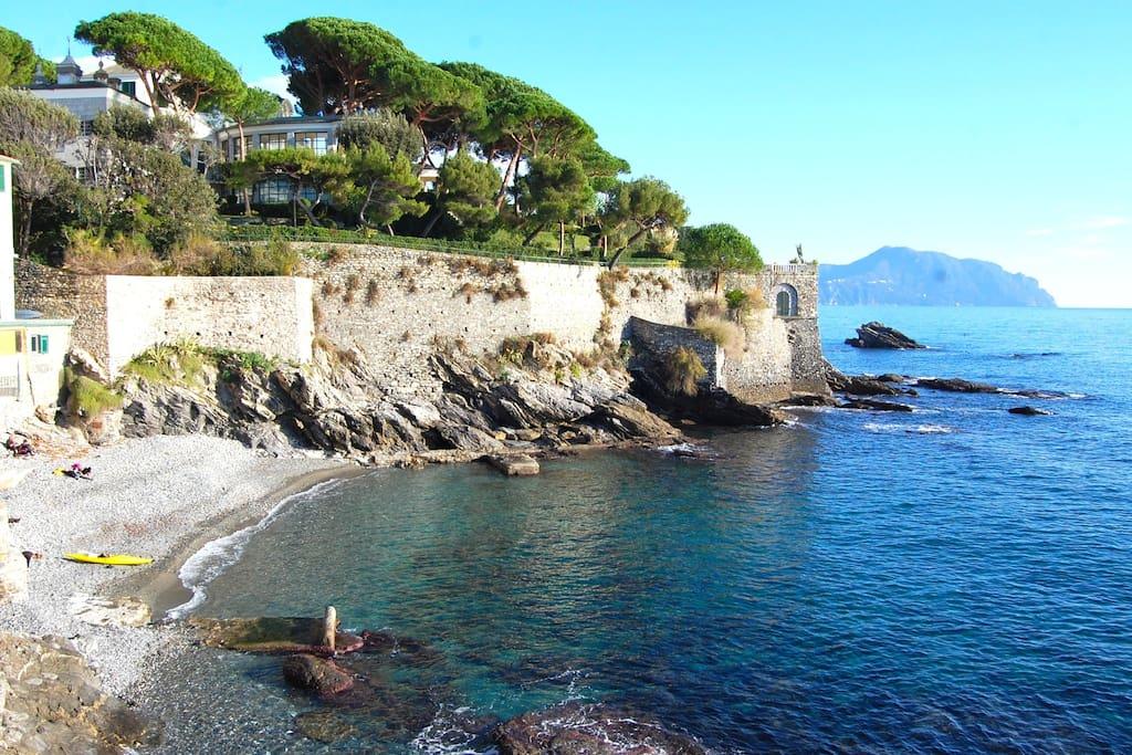 Appartamenti Affitto Genova Nervi