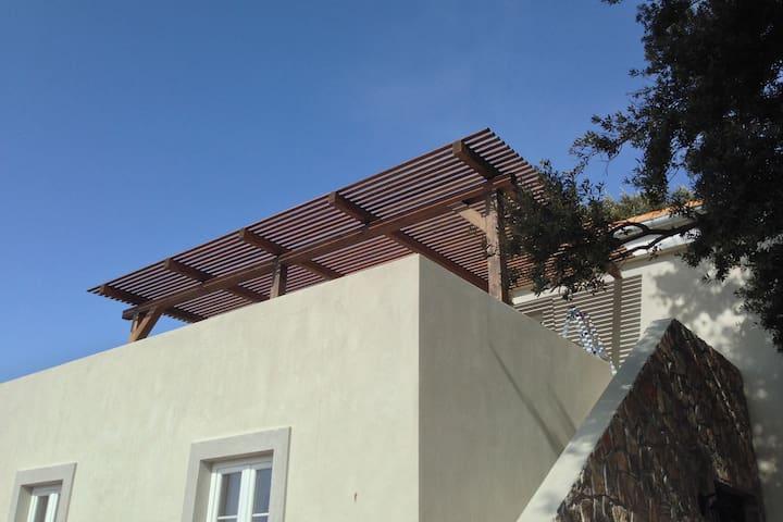 Large pergola providing shade