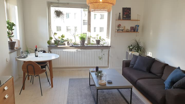 Bright and cozy Apartment close to city and nature