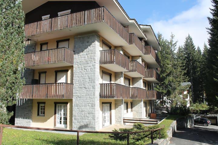 Finestra sulle montagne nel centro di madesimo - Madesimo - Apartment