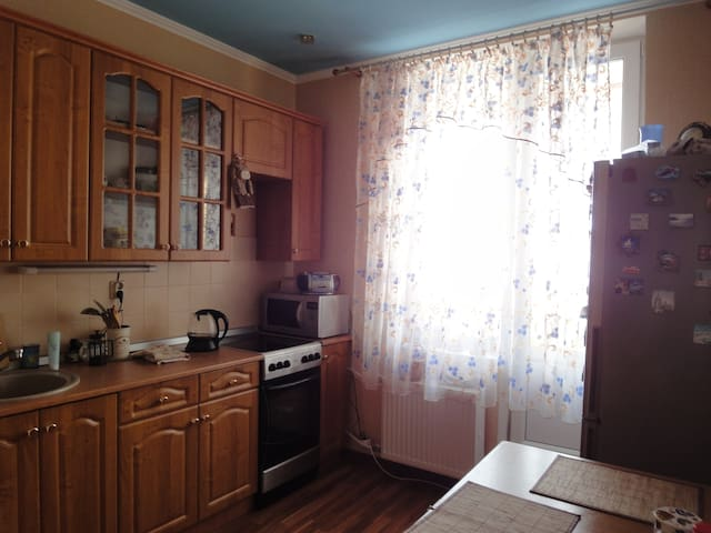 Cosy apartment near historical park - Pushkin - Flat