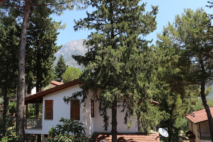 Forest Villa on Olympos Mountain Close To The Sea
