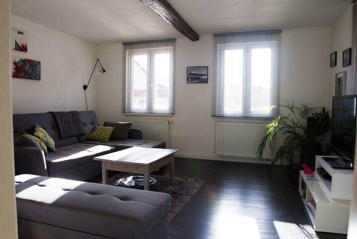 Maison à Brumath -12' de Strasbourg - Brumath - House