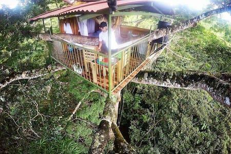 Reserva Natural Paway Putumayo. Cabaña Arbol a 25m