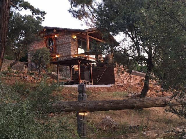 Casa Liz T. - Gelemiş Köyü - Vila