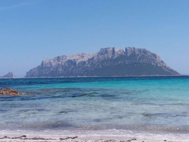 Holiday Lettings 200mt dal mare FRONTE TAVOLARA