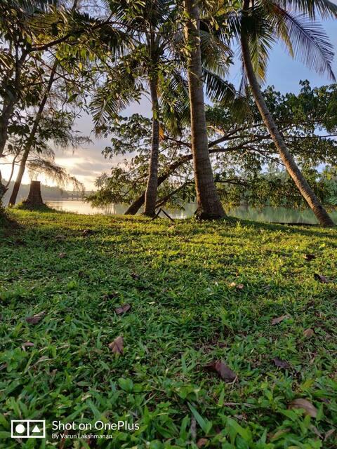 Paradise Creek (kannur)