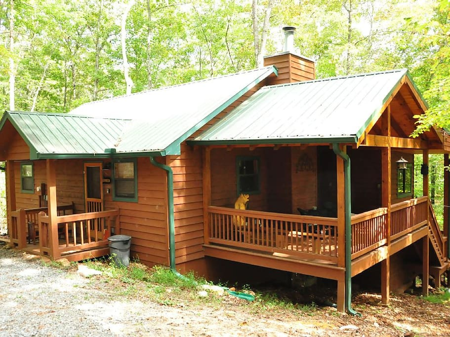 Dog friendly cabin in blue ridge ga cabins for rent in for Large cabin rentals north georgia
