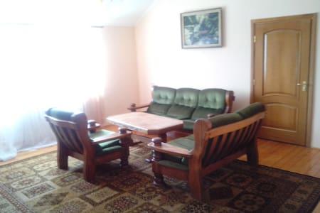 Просторная комната в квартире - Kharkiv - Apartment