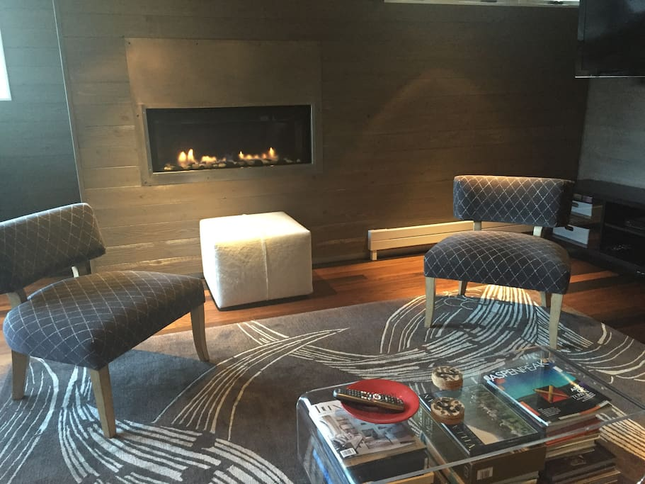 Living room with gas fireplace and television
