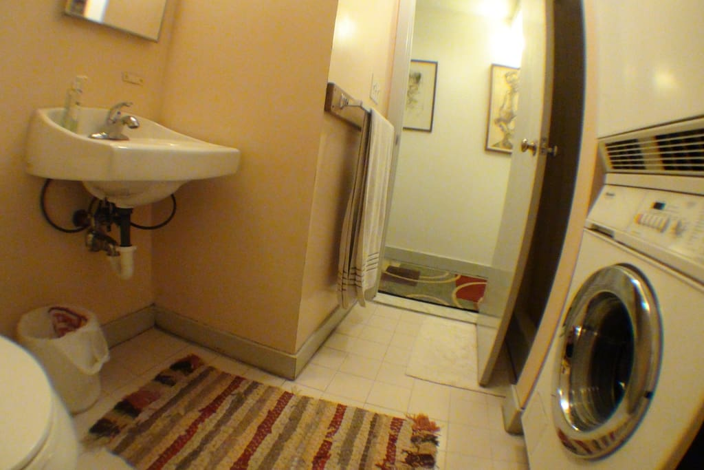 Bathroom with shower and Miele washer/dryer.