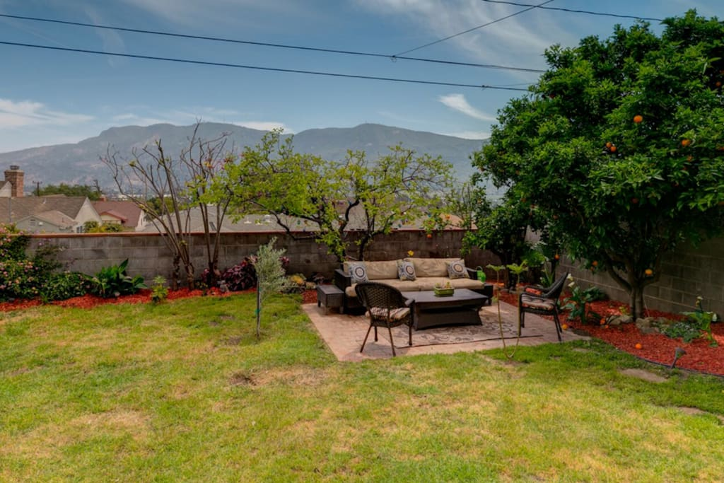 Wonderful mountain view and fresh fruit to pick from our apple, persimmon, orange and tangerine trees.