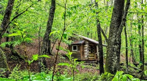 Bird Hollow Cabin (1 room antique logs)