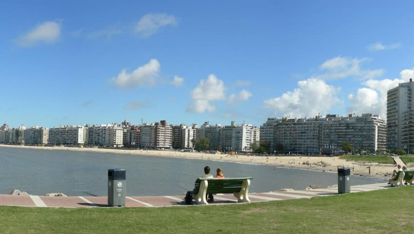 Next to the sea / double, single / 20 min downtown - Montevidéu