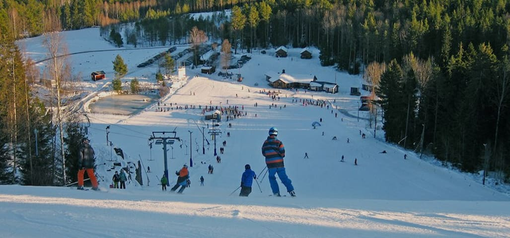 Ingatorp Valbacken (20 km) or Asby Alpina (27 km) offers skiing for the whole family, even grillstuga and restaurant
