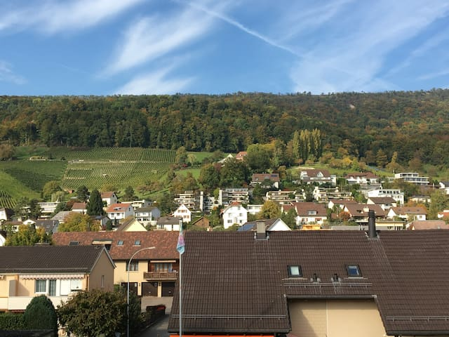 Atypic Duplex Appartement only 20min from Zurich