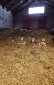 Syðri Brekka sheep farm - Be a part of the family! - Blönduós - House