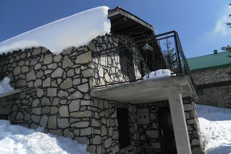 Villa on Popova Sapka ski center - Popova Shapka - วิลล่า