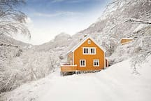 Lipton Lodge Rjukan (Room 1+1)