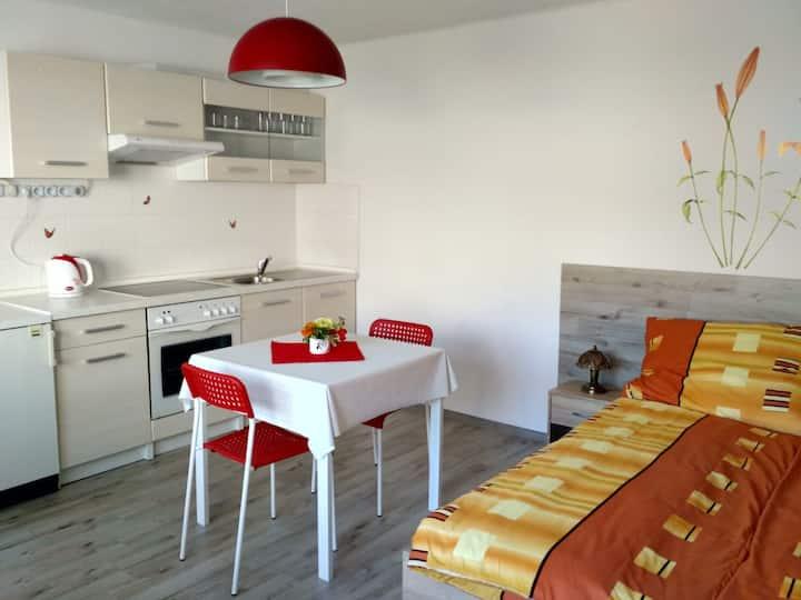 Nový apartmán ve Starých Splavech u Máchova jezera