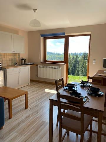 Apartament w górach Gorce z ogrodem, Podhale