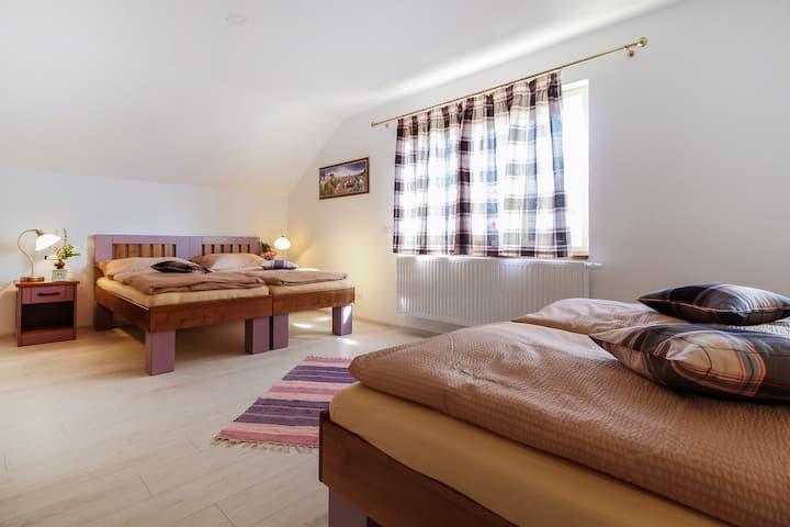 Spacious room for four near Cesky Krumlov