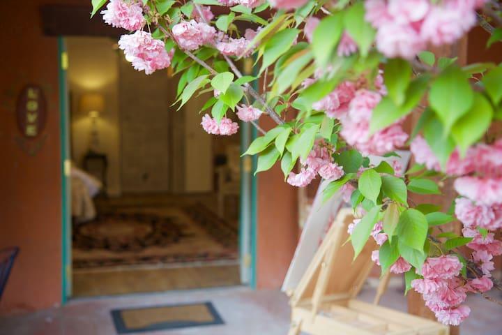 Rustic, romantic,creative, suite, private entrance - Albuquerque - Bed & Breakfast