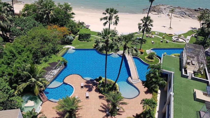 A2私人沙滩.海景房.新房特价.五星级高级公寓.泳池开放了!The Palm