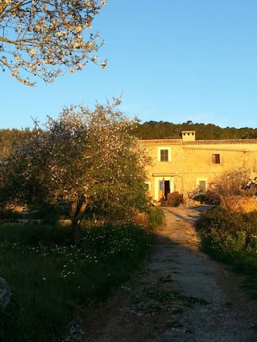Room with private bathroom and WIFI - Santa Eugènia - House