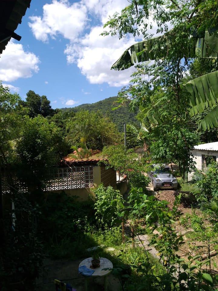 Natureza e tranquilidade na sua varanda