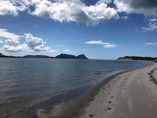 Ruakaka Beach Tranquility