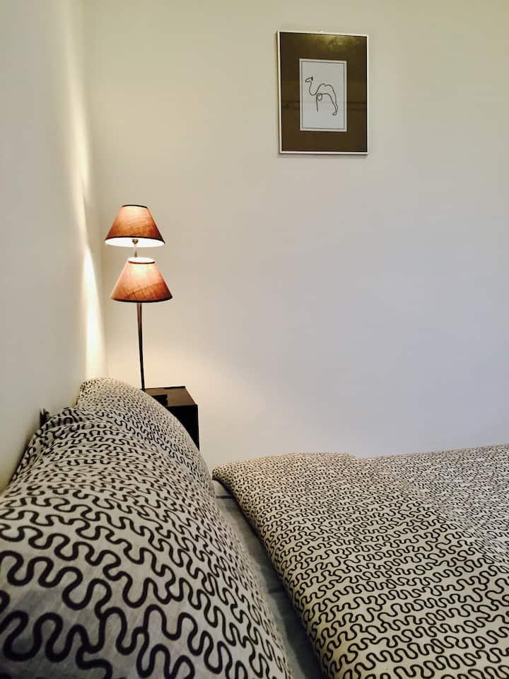 Appartement T2 de 60 m2 - Centre Ville